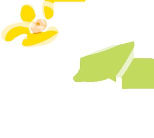 fleur-illustration